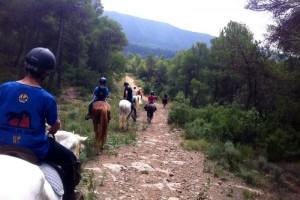 Uns trenta cavalls i genets fan parada aquest dijous a Navàs, camí del Parlament