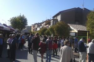 Festa del Bolet de Cal Rosal