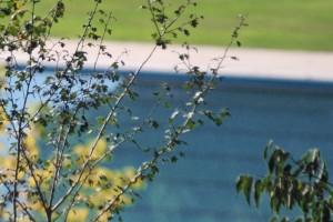 Gironella engega el període de selecció de personal per a la piscina municipal