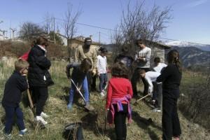 El Parc Natural del Cadí-Moixeró i les escoles de la zona celebren la Festa de l'Arbre