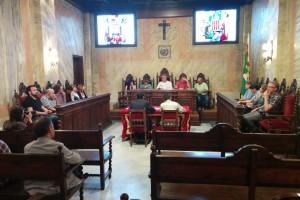 L'últim ple ordinari del mandat formalitza a Berga el preu de les hores extres per Patum
