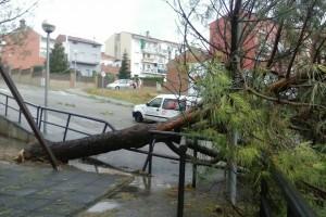 La tempesta amb calamarsa deixa arbres caiguts i afectacions a la xarxa elèctrica a Gironella