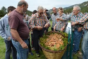 Alfred Prados, de Cal Rosal, guanya el Concurs de Boletaires amb una cistella de 48,5 quilos de rovellons