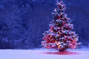 Torna a escoltar l'especial de música de Nadal