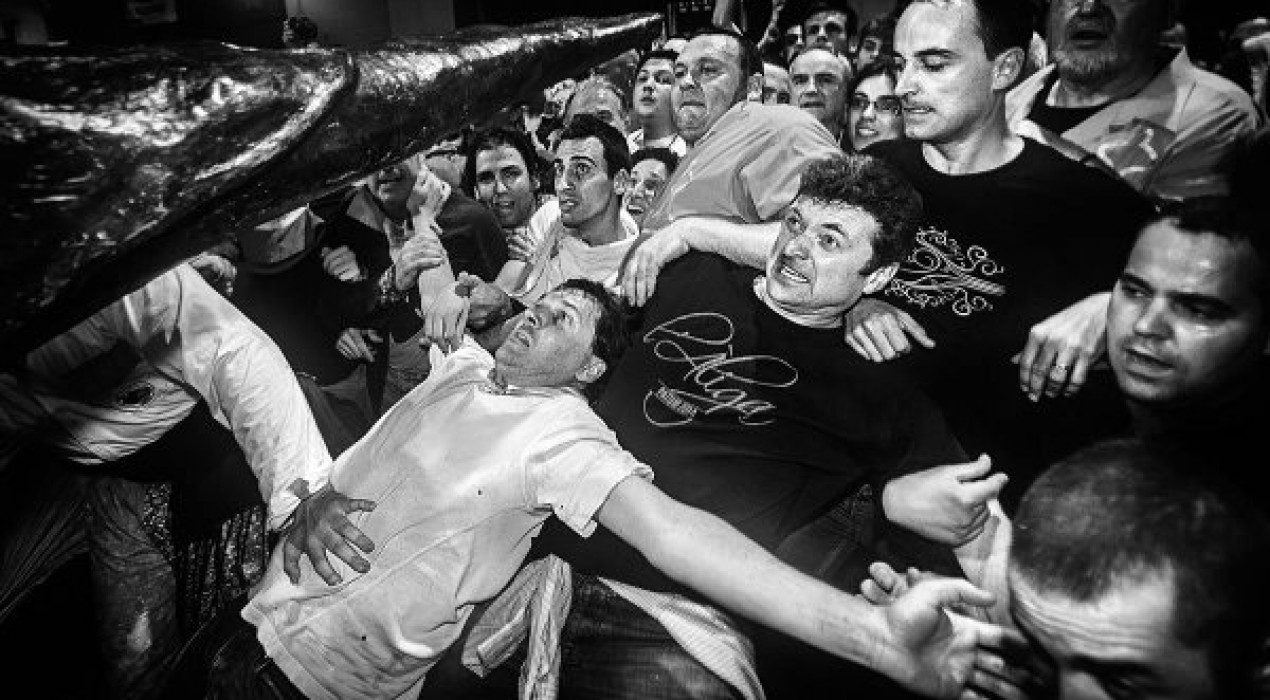 'Aligats', un llibre que capta en imatges les emocions, vivències i sentiments del ball de l'àliga de la Patum