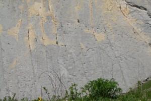 La Generalitat destina 200.000 euros al jaciment de Fumanya i a les seves petjades de dinosaure