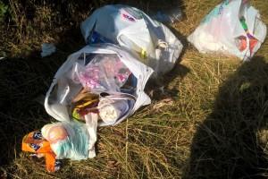 Borredà i Les Llosses inverteixen un total de 5.000 euros en la neteja de la riera de Merlès