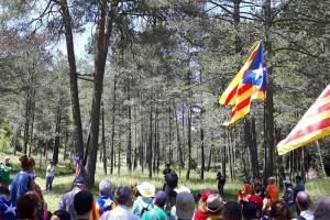 Castellar del Riu treballarà perquè l'aplec del Pi de les Tres Branques recuperi participants