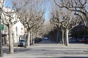 Sorgeixen noves iniciatives al Berguedà per fer els encàrrecs a les persones més vulnerables davant un contagi