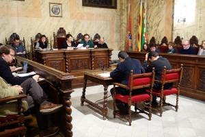 L'Ajuntament de Berga adjudica les obres del canvi d'enllumenat i preveu enllestir-lo aquest 2017
