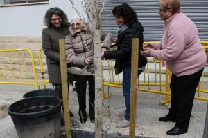 La lluita contra el càncer guanya visibilitat a Berga amb la plantació de dos nous ginkgos a la ciutat