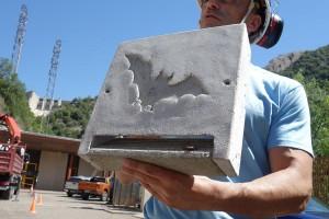 Endesa instal·la tres nius per a ratpenats a la central hidroelèctrica de la Baells