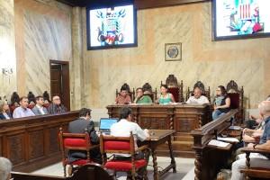 Vendaval de plens municipals al Berguedà per aprovar la moció de l'AMI en contra de l'article 155
