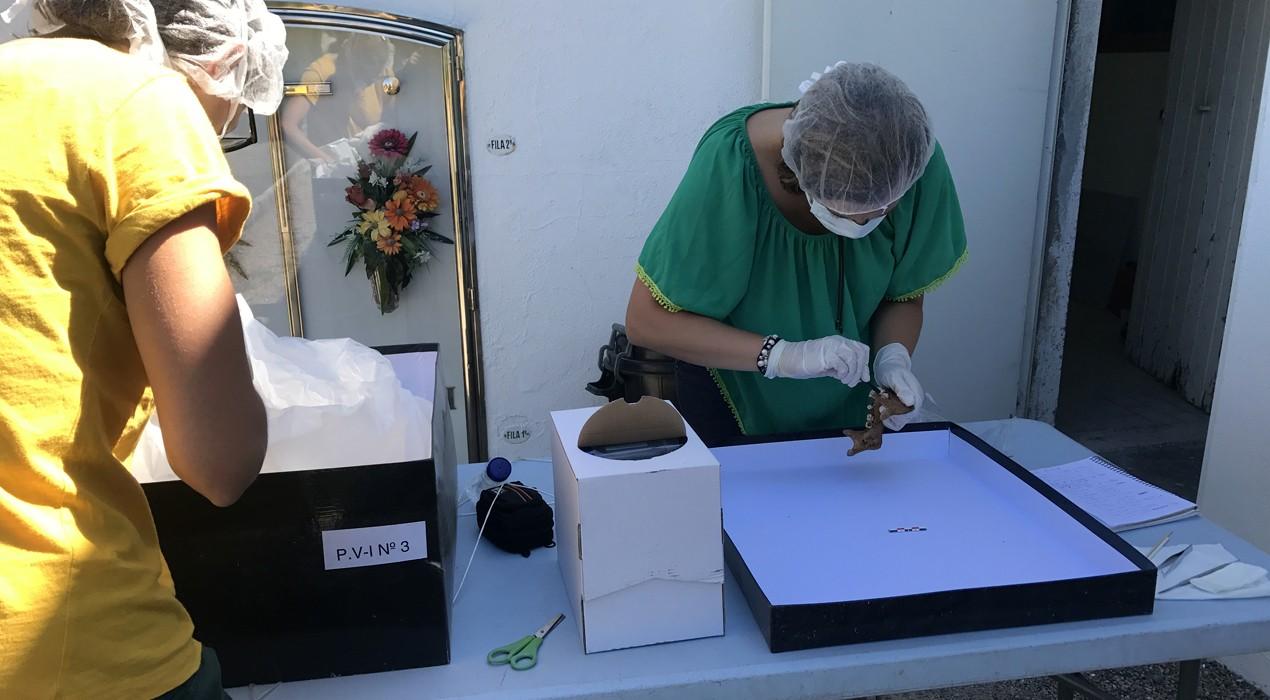Realitzen extraccions d'ADN dels cossos de la fossa de Puigvistós, a Prats de Lluçanès
