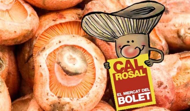 Festa del Bolet de Cal Rosal 2017 @ Cal Rosal