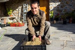 Distinció per al pèsol negre, el blat de moro escairat, les nyàmeres i la patata de muntanya