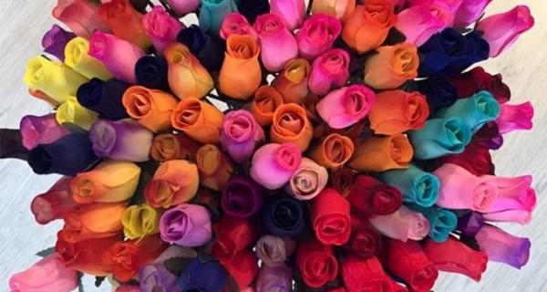 roses fusta sant jordi