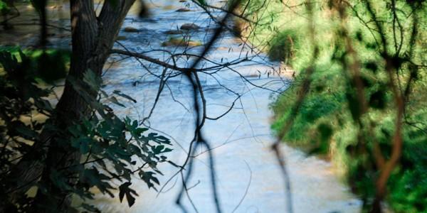 llobregat-riu