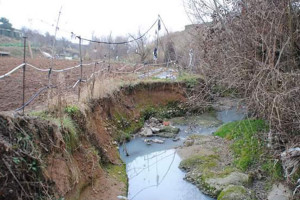 Els veïns de la Rasa dels Molins pressionen l'Ajuntament de Berga perquè acabi amb la plaga de mosquits tigre