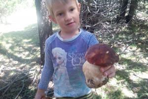 Un nen de 4 anys de Berga troba un cep de 400 grams a la Cerdanya
