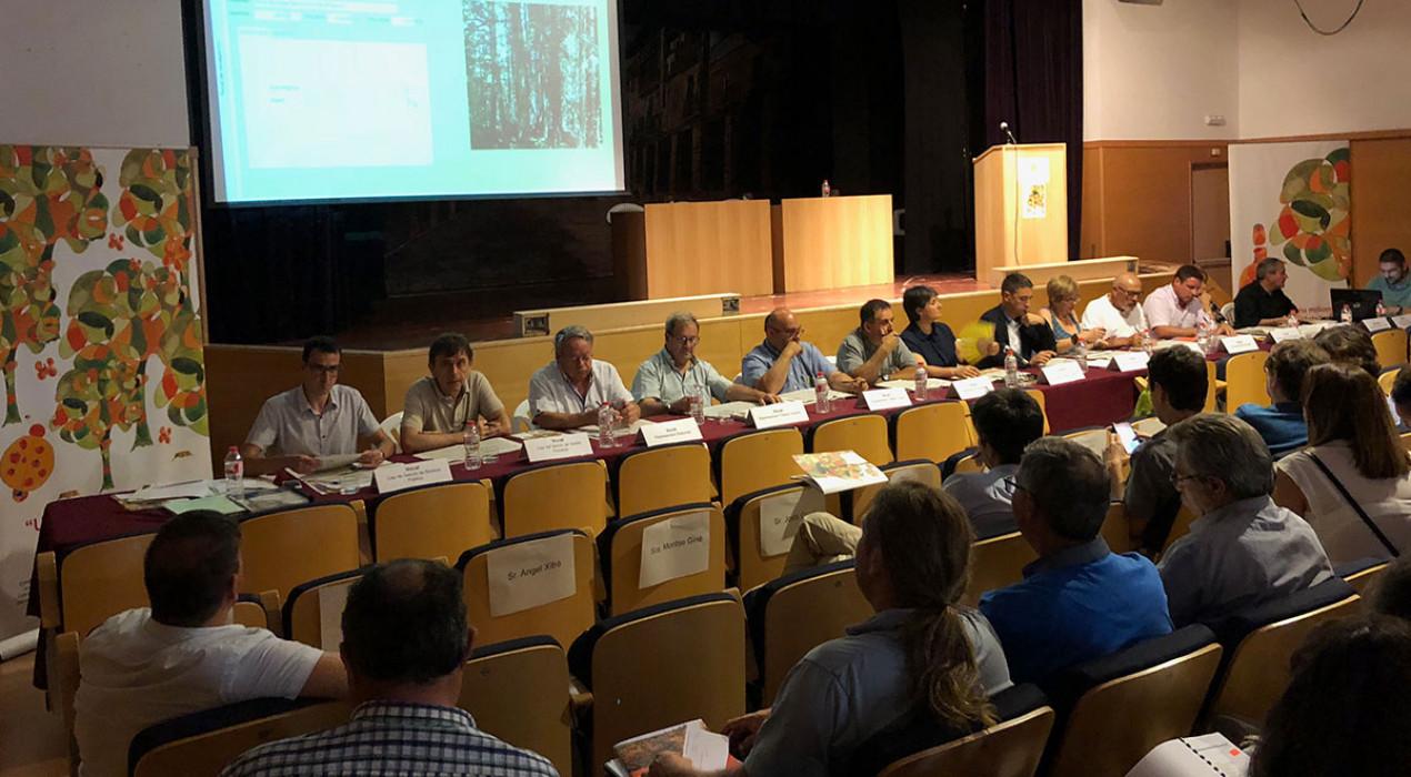 La Generalitat subhasta 73.000 tones de fusta a Bagà, en l'acte més important del sector forestal a Catalunya