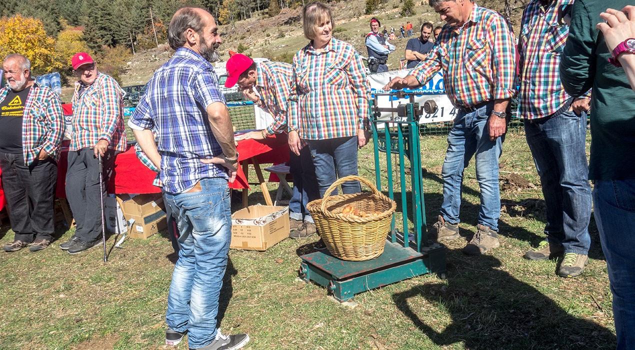 El concurs de boletaires de Puigventós es trasllada a la plaça Viladomat de Berga per la previsió de pluges