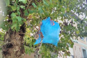 Bosses en papereres, al terra i fins i tot en un arbre: el paisatge hores abans del porta a porta