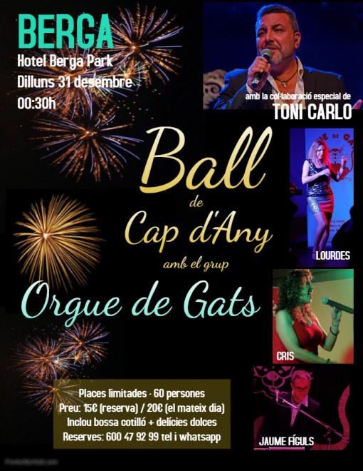 Ball de Cap d'any a Berga @ Hotel Berga Park (BERGA)