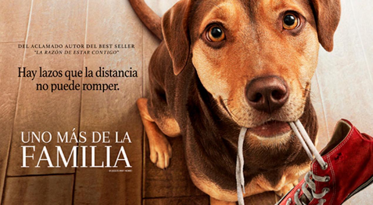 Cinema a Berga: UNO MÁS DE LA FAMILIA