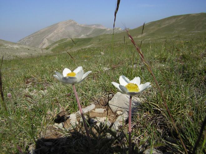 27è CONCURS DE FOTOGRAFIA @ Centre del Parc Natural del Cadí-Moixeró (BAGÀ)