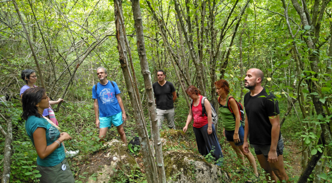 SORTIDA TERAPÈUTICA: bany de bosc