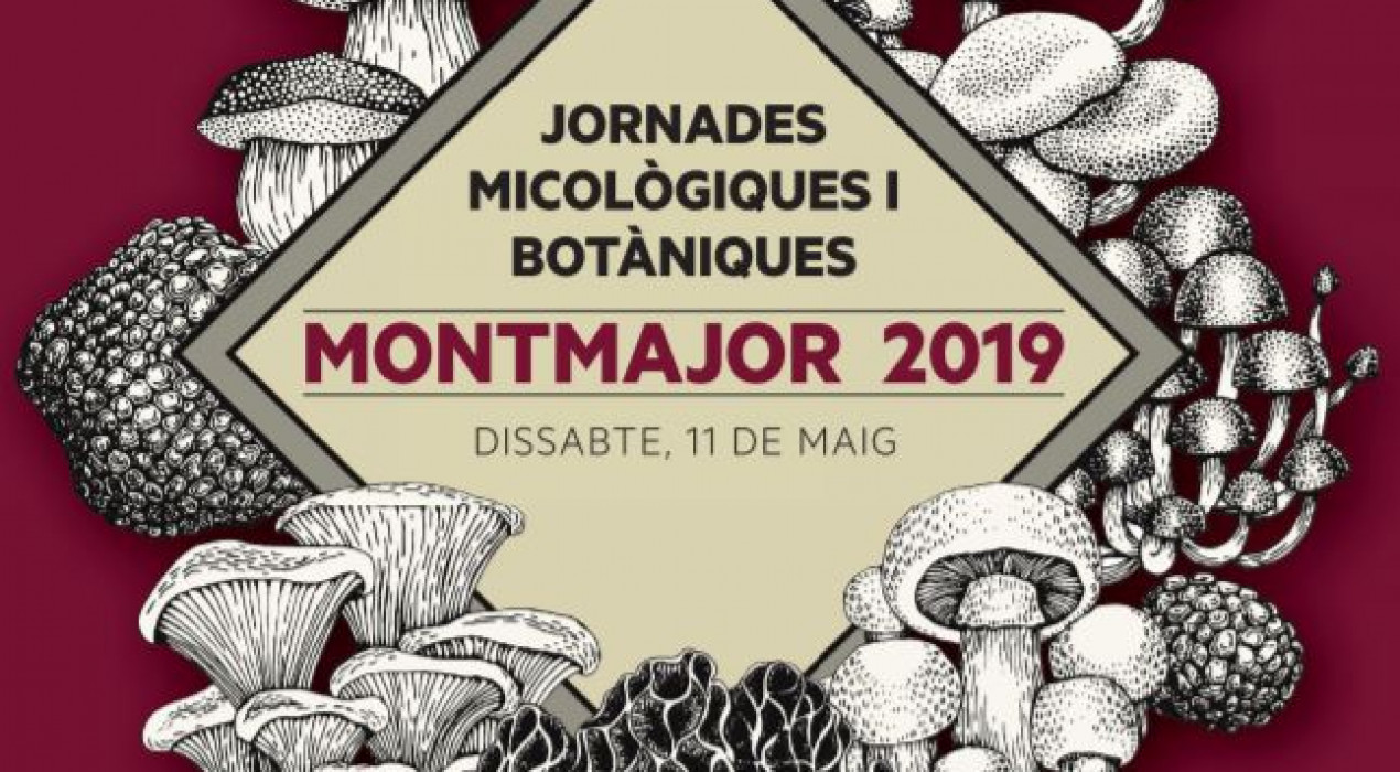 Jornades Micològiques i Botàniques 2019