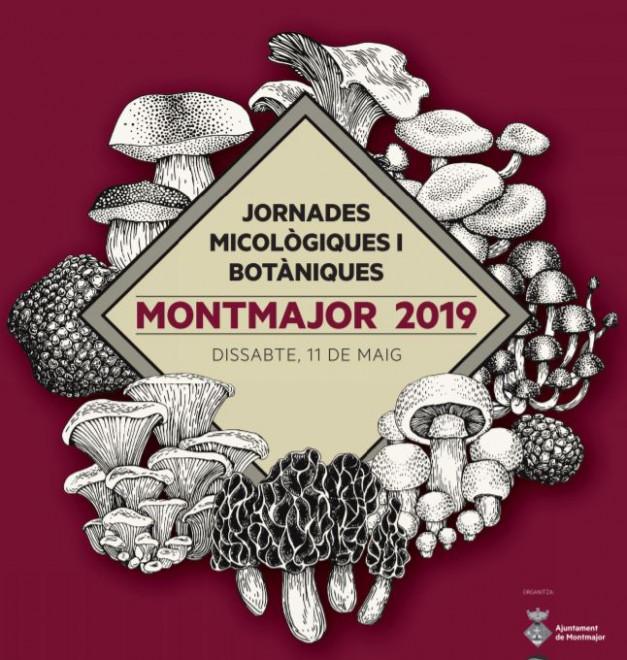 Jornades Micològiques i Botàniques 2019 @ Museu d'Art del Bolet (MONTMAJOR)
