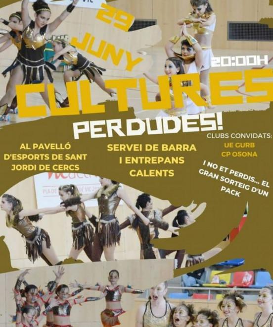 Festival de Patinatge @ Pavelló d'esports de Sant Jordi de Cercs