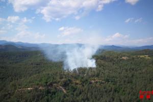 Controlat un foc que ha cremat uns 4.000 metres quadrats de bosc a Borredà