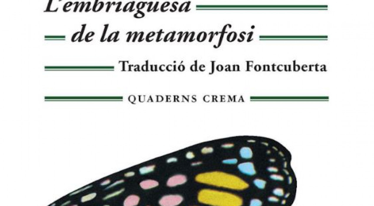 Club de lectura: L'embriaguesa de la metamorfosi