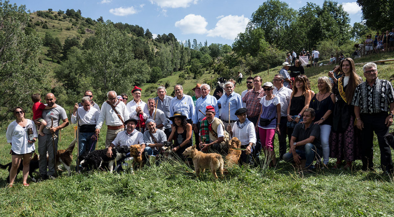 Un concurs sense gossos d'atura: els quinze participants a Castellar de n'Hug eren border collies
