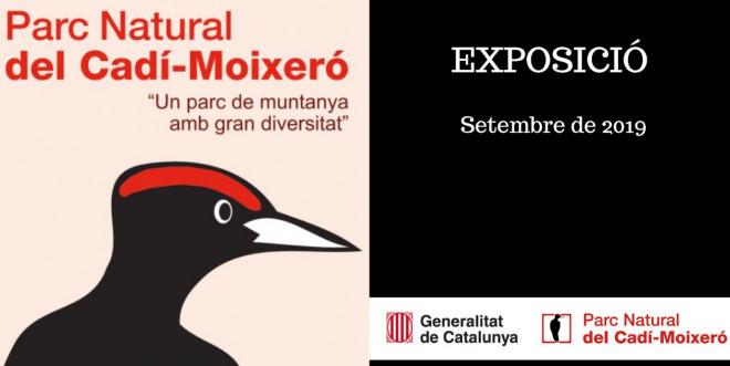 """Exposició """"Un parc de muntanya amb gran diversitat"""" @ Biblioteca Ramon Vinyes i Cluet (BERGA)"""