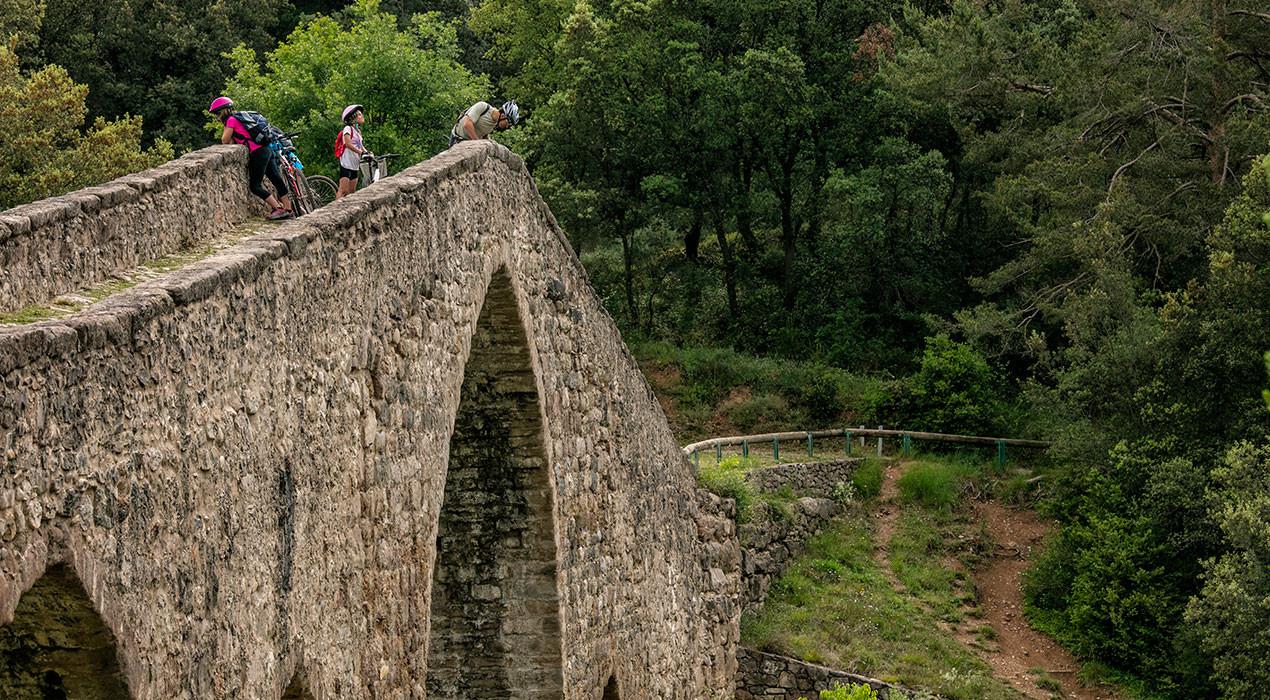 Un informe de la Generalitat alerta que el projecte Vies Blaves no té prou en compte el patrimoni natural