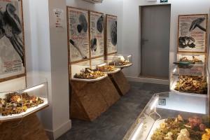 El Museu d'Art del Bolet de Montmajor habilitarà la segona planta per convertir-la en una sala polivalent
