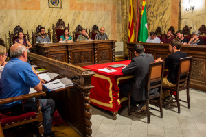 El govern de Berga retira la tinença d'Alcaldia a la regidora Rifà per la participació en una celebració espontània