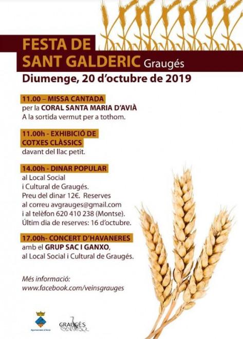 Festa de Sant Galderic 2019 @ Graugés (AVIÀ)