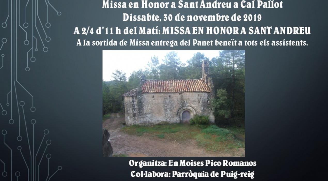 Missa en Honor a Sant Andreu