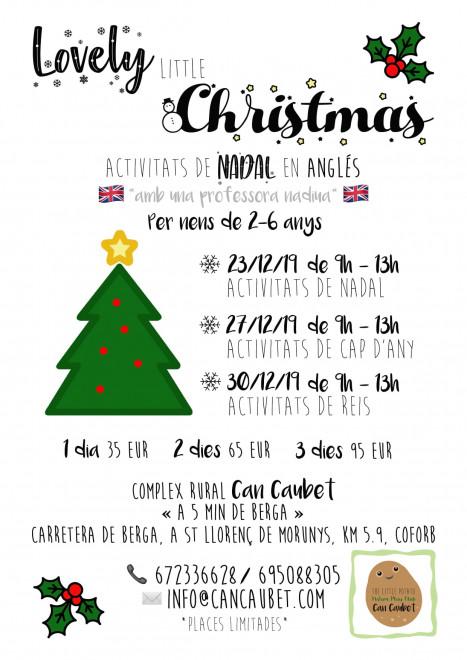 Lovely little Christmas @ Complex Rural Can Caubet