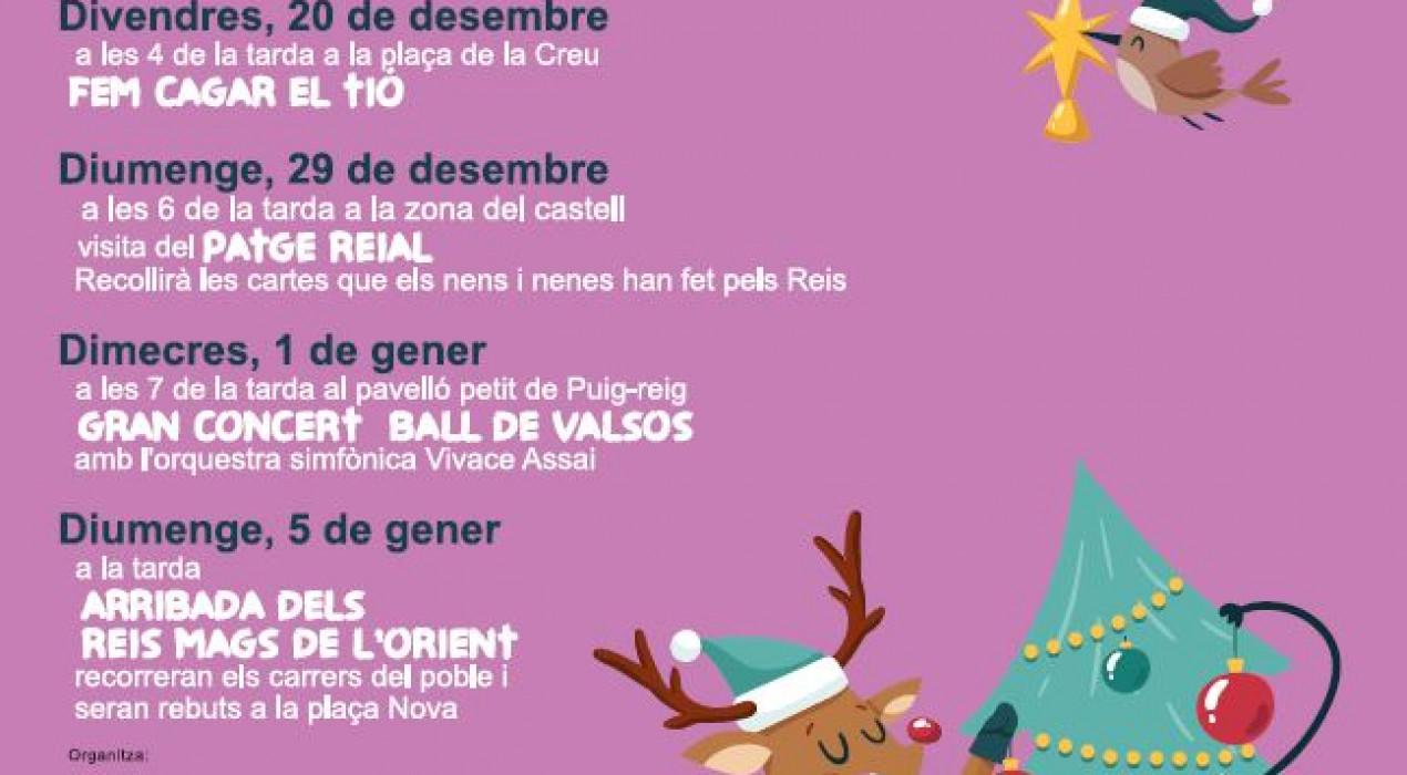 """Gran concert """"Ball de Valsos"""""""