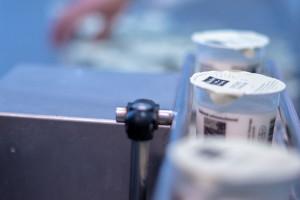 Grup Horitzó es converteix en el màxim accionista de la marca de iogurts Delícies del Berguedà