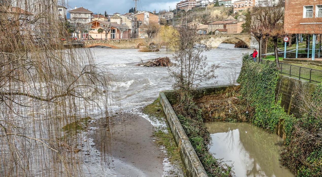 Gironella organitza quatre jornades per netejar la llera del Llobregat després del temporal Glòria