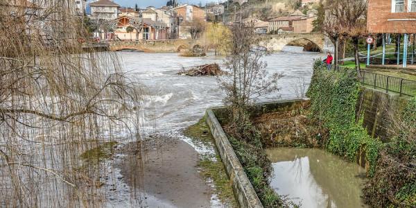 llobregat inundacio desbordament gironella gener 2020 riu (11)