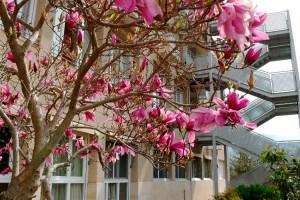 El patronat de la residència de Bagà reconeix un deute d'1,3 milions d'euros