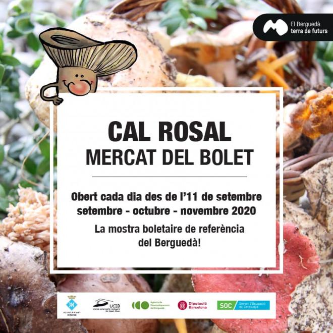 Mercat del Bolet de Cal Rosal 2020 @ Cal Rosal